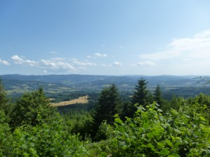 Vue sur la vallée de l'Ormont