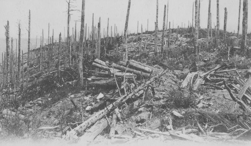 le 16 octobre 1915 fin de la bataille du linge charles barberotcharles barberot